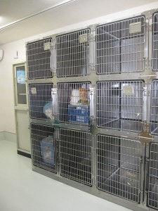ペット預かり室2